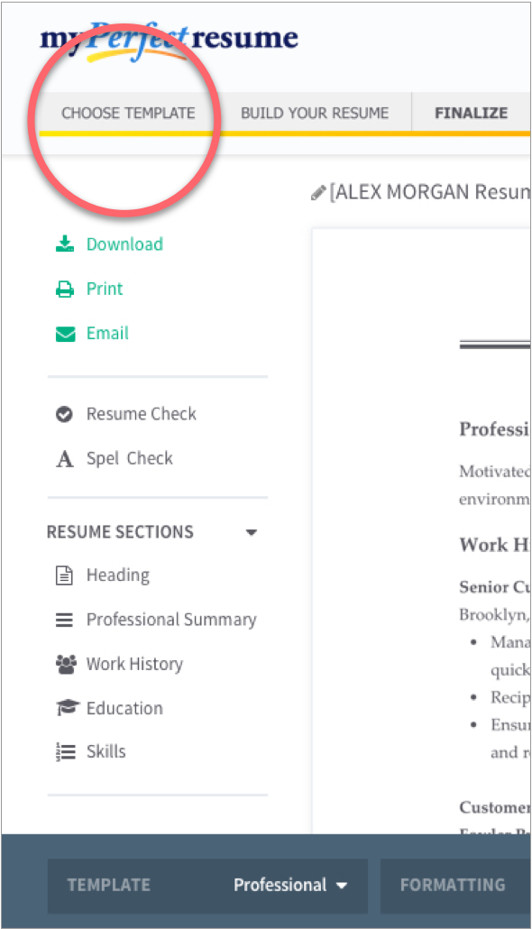 ... Professional Resume Templates 1  Build A Free Resume Online